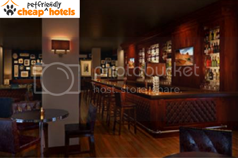 Cheap pet friendly hotels fabulous and best hotels try for Dog friendly hotel nyc