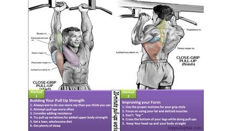 benefit  pull ups build  upper body muscle groups