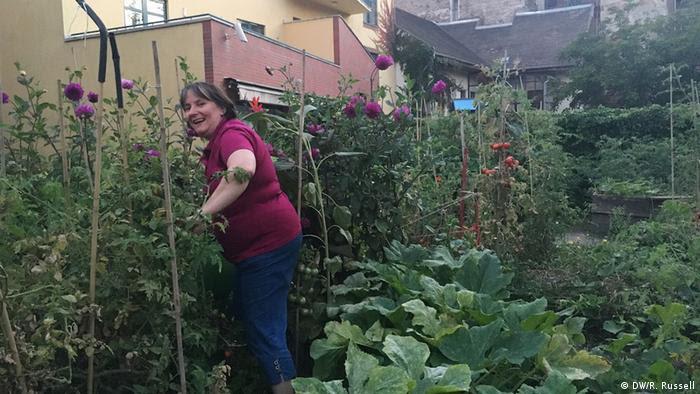 Em hortas comunitárias em Budapeste, moradores podem cultivar seus próprios legumes