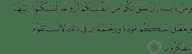 #1Hari1Ayat: Menuju Keluarga Sakinah Mawwadah Warahmah