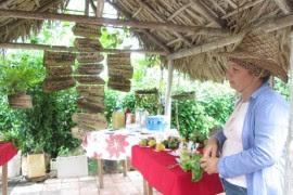 Iraida Semino, en La Maravilla, recibió las tierras en usufructo en 2013