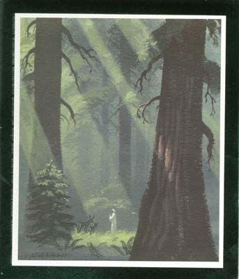 Forest Madonna