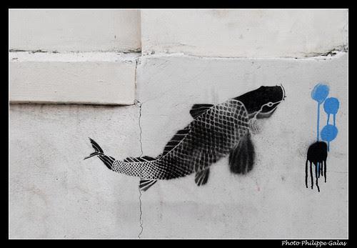 Sur les murs