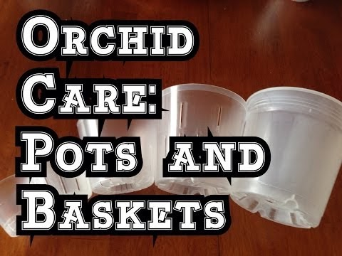 ORCHID CARE: HOW I MAKE HANGING POTS FOR ORCHIDS AND CARNIVOROUS PLANTS