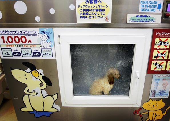 Foto: AP Photo/Itsuo Inouye