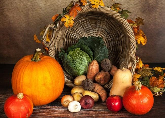 Pumpkin 1768857 1280