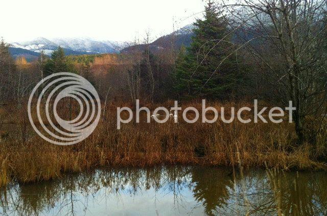 2012-11-18154748_zps4dd12fe1