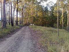 Rail Trail (1)