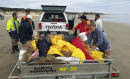 6 whales refloated after stranding on New Zealand beach