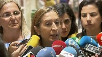 Declaracions d'Ana Pastor, aquest dimarts, després d'acreditar-se al Congrés