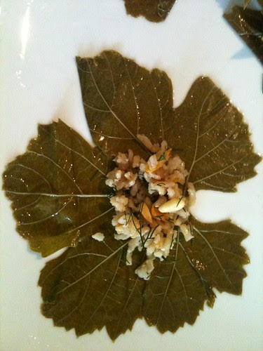 Stuffing Grapevine Leaves