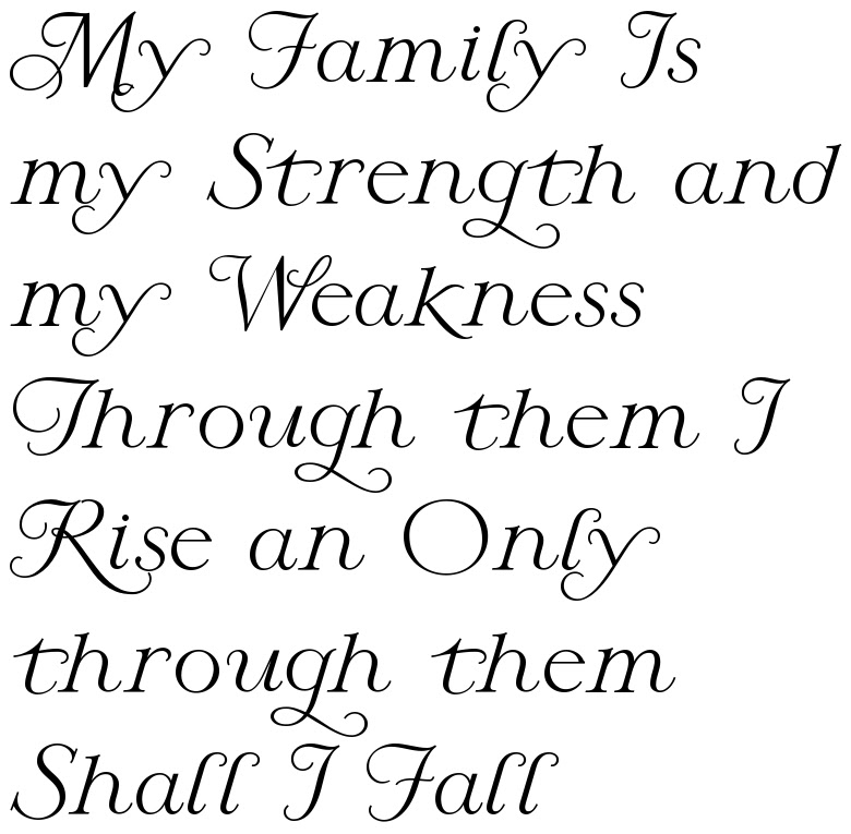 My Family Is My Strength And My Weakness Through Them I Rise An Only