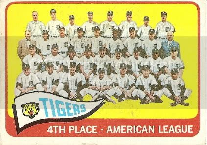 #173 Detroit Tigers Team
