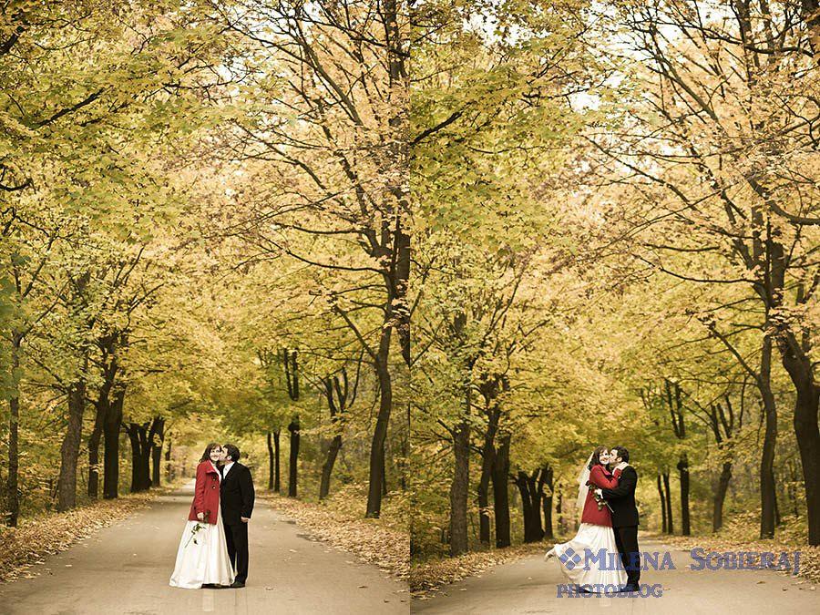 Fotografia ślubna w Plenerze śląsk
