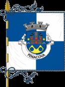 Bandeira de Penacova
