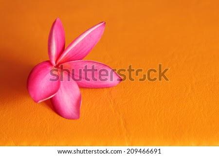 http://www.shutterstock.com/pic-209466691.html?rid=591133