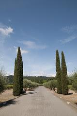 Charles Krung Winery, Napa Valley