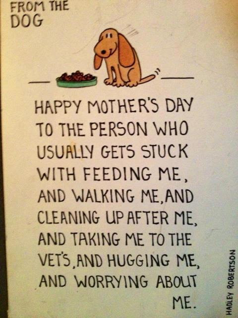 Happy Mothers Day 2014 Animalcare Petfindermy Wagazine