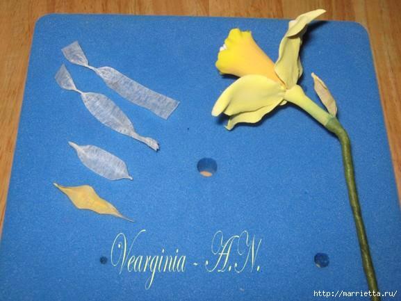 Лепка нарциссов из сахарной мастики и холодного фарфора (16) (577x433, 114Kb)