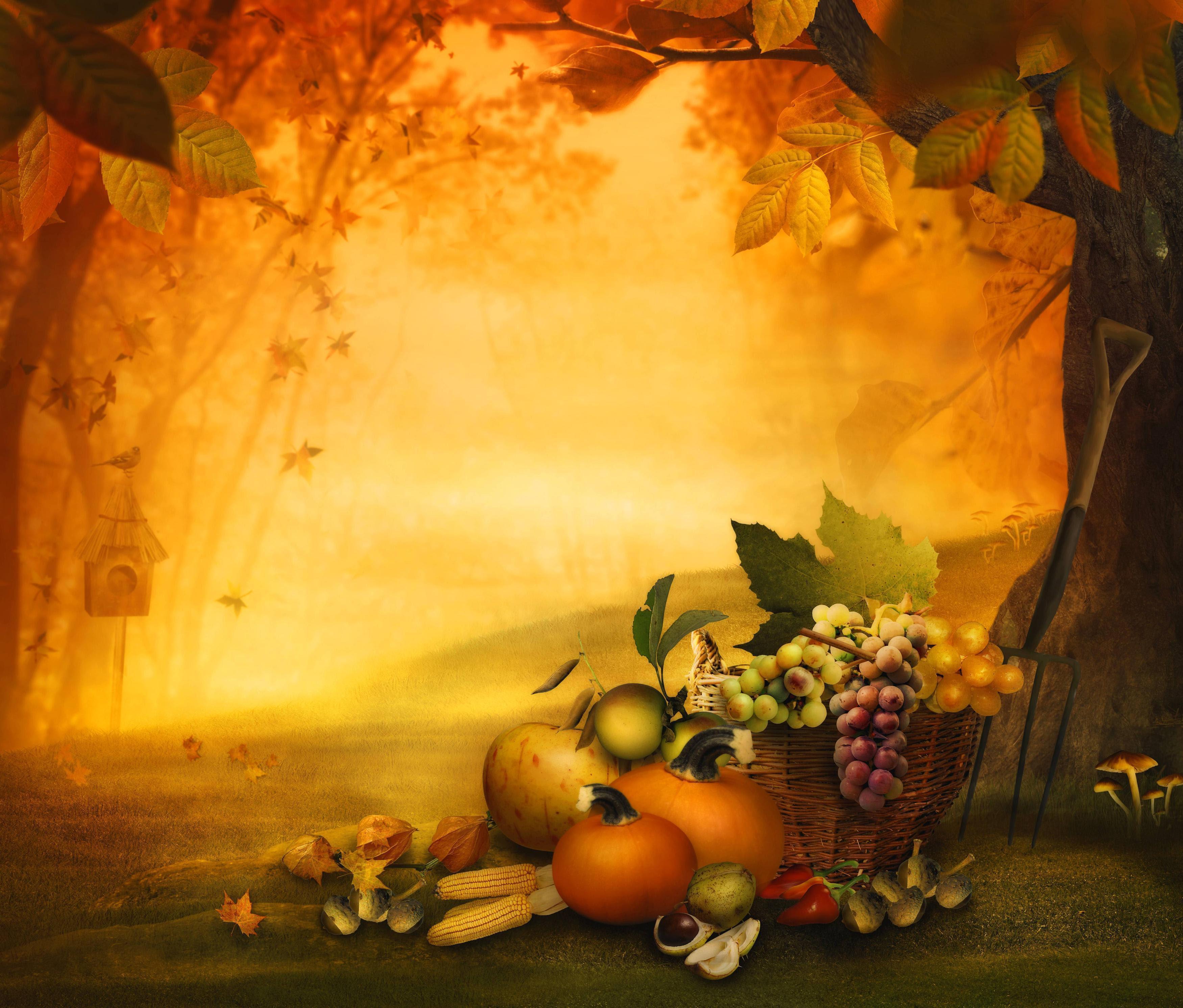 Thanksgiving And Mondays Follow 2 Serve