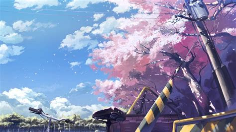 anime cherry blossom background page