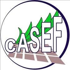 AO1D520373 - CASEF : Recrutement d'un Consultant Individuel chargé de l'Elaboration d'une stratégie opérationnelle de mise en œuvre et de suivi des actions en vue de l'égalité des genres