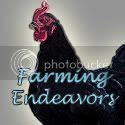 Farming Endeavors