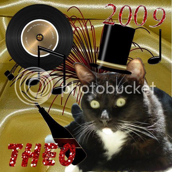 Tuxi Cat,Happy New Year