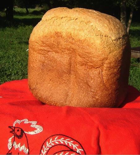 Bread Machine Wonder