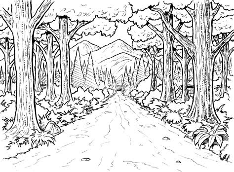 rainforest coloring pages  coloring pages