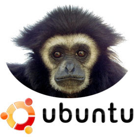 http://questchile.files.wordpress.com/2007/06/ubuntu-gutsy-gibbon.jpg