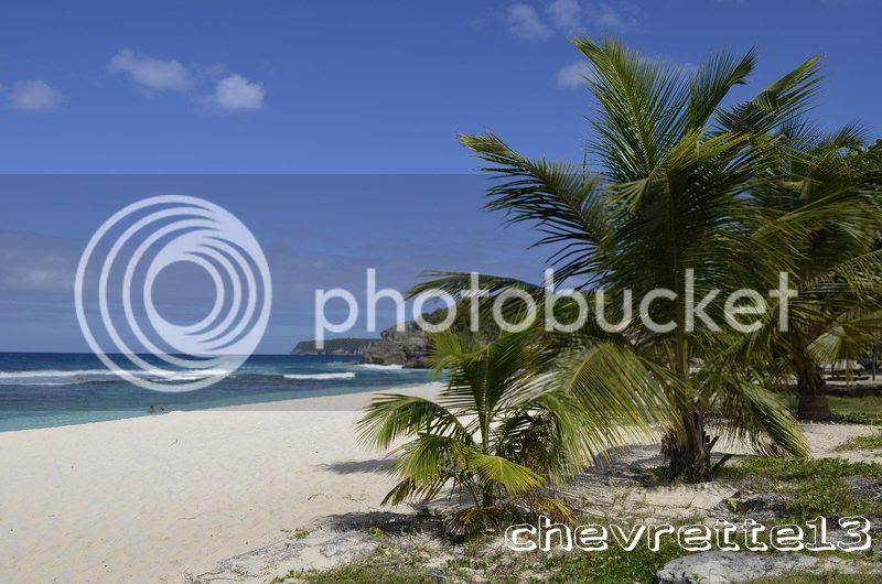 http://i1252.photobucket.com/albums/hh578/chevrette13/Guadeloupe/_DSC0199Copier_zpsba31c222.jpg