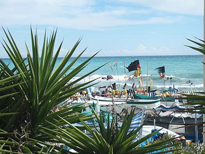 mer et palmiers.jpg