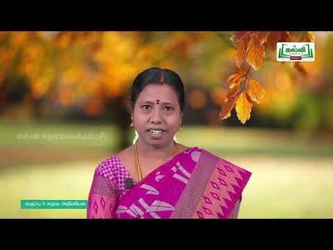 5th Social Science நல்ல குடிமகன் பருவம் 1 பாடம் 3 Kalvi TV