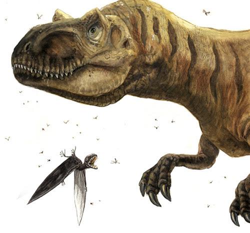 allosaur anurognathus