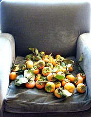my favourite chair