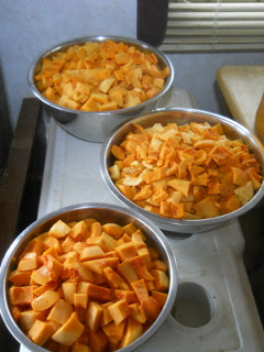Sliced Up Butternut Squash