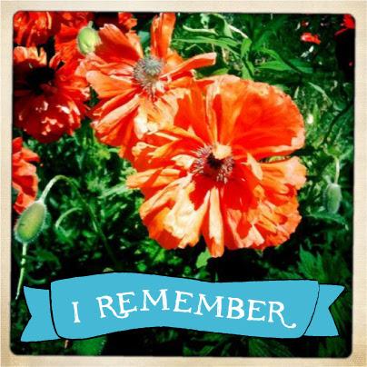 Remebrance Day: Poppies