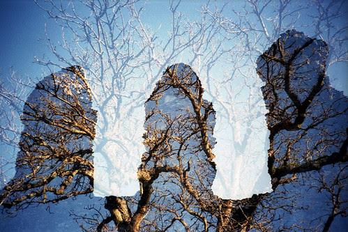 ruins and trees by pho-Tony
