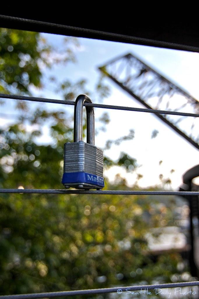 Love Lock Near the Locks in Seattle