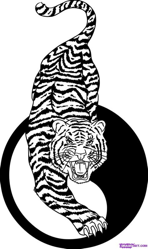draw  tiger tattoo step  step tattoos pop