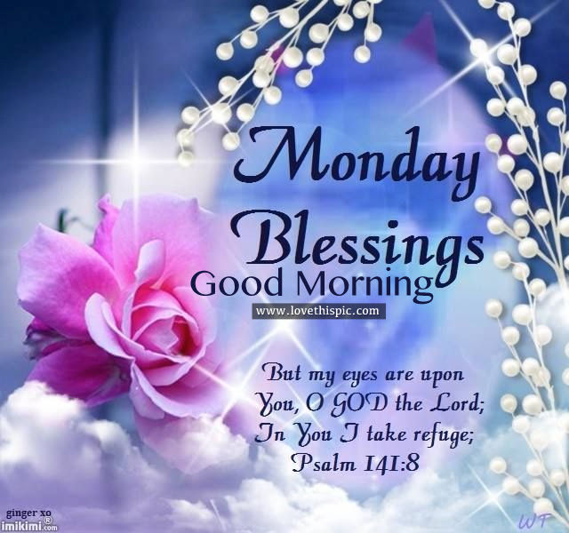 Good Morning Lovely Monday Images Good Morning Friends Have A Great