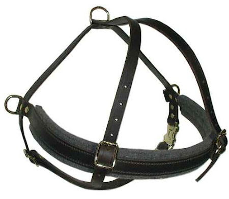 breeds of dogs. big dog harness, larhe padded