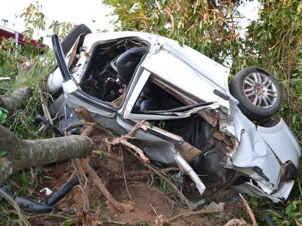 O carro saiu da pista, caiu numa ribanceira e só parou quando bateu em uma árvore (Foto: Arquivo Pessoal/Marcelo Roque Redeling)