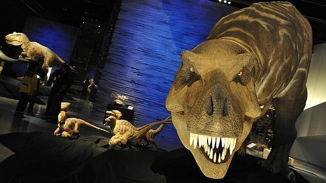 Científicos británicos encuentran restos de sangre de dinosaurio