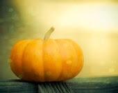 Pumpkin, Halloween Photo, Orange, Gourds, Halloween Decor, Still Life, Fall, Autumn Art, 8 x 10 Print - Fine Art photography, Kitchen Decor - Squintphotography