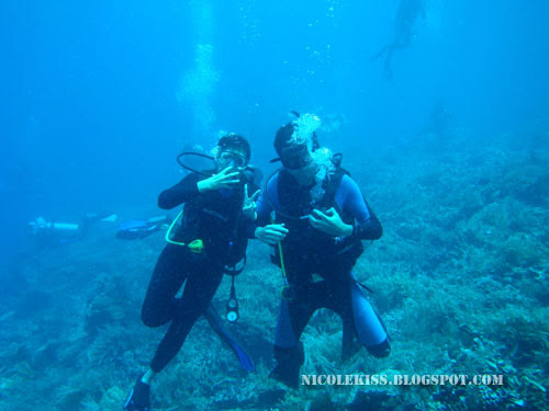 diving with gerald in bunaken