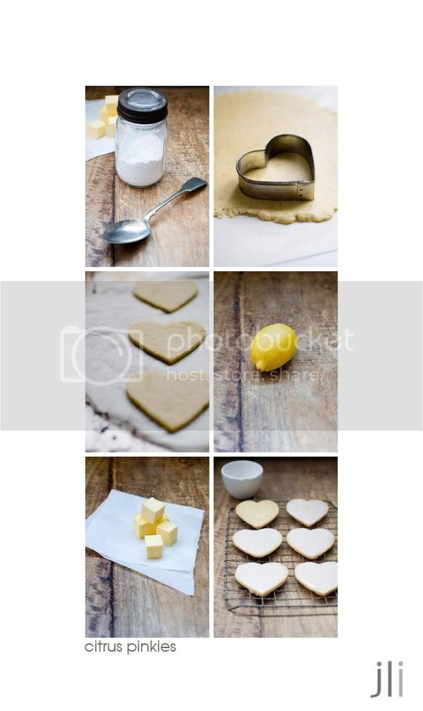 citrus pinkies,jillian leiboff imaging,sydney,food photography,baking,styling