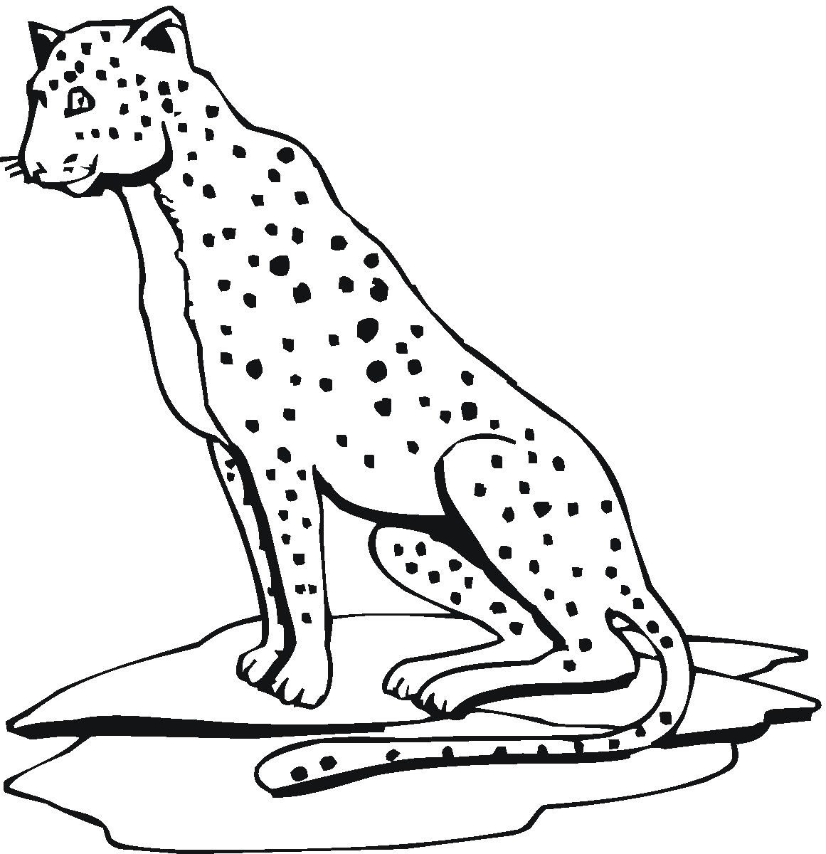 Cheetah Cb40 - Friv Free Coloring Pages For Children - Cheetah ... | 1200x1161