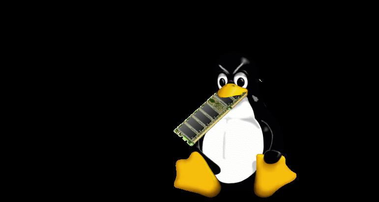 Linux ate my ram!!